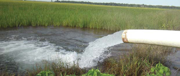 Energy-Efficient Irrigation Pumping 96 GWh of Power Can be Saved