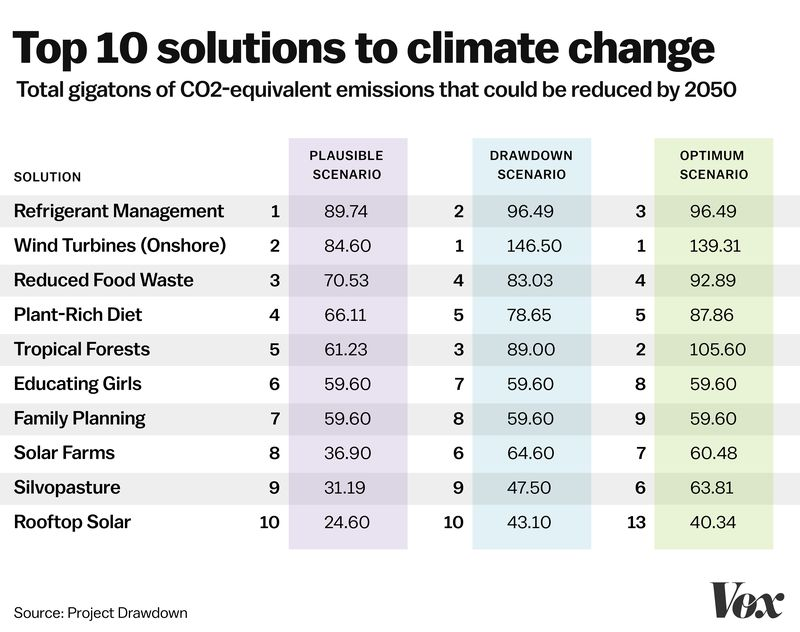 We CAN REVERSE Global Warming in 30 Years | Sustainability ...