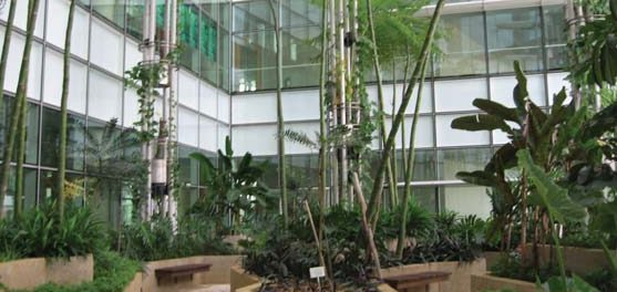 Green Buildings are a Big Hit in India