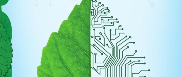 Green Gadgets (A savvy, green guide to gadgets for a sustainable, low-carbon lifestyle