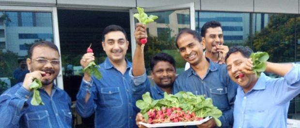 Organic Farming in Raheja Campuses