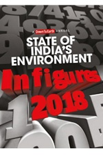 2018 State of India's Environment
