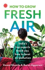 How to Grow Fresh Air: India's top experts teach how to beat air pollution